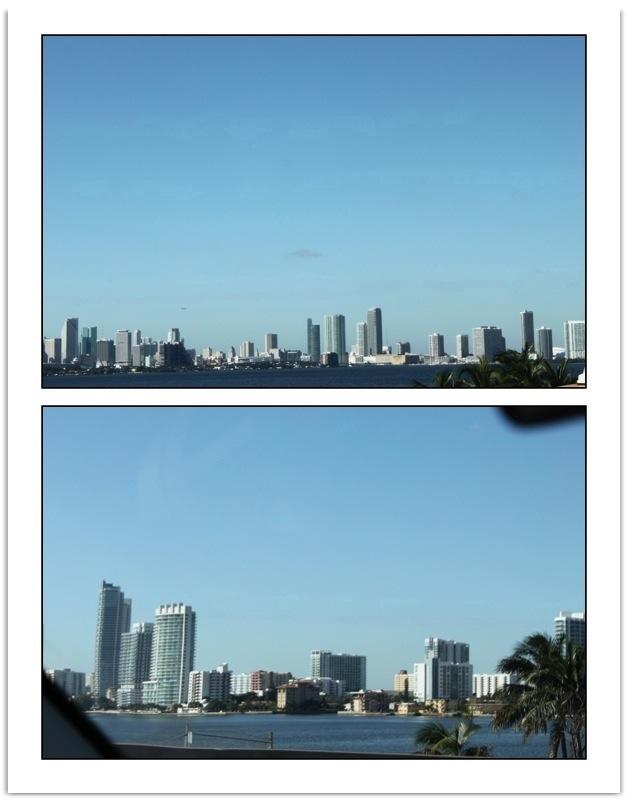 20111106-171548.jpg